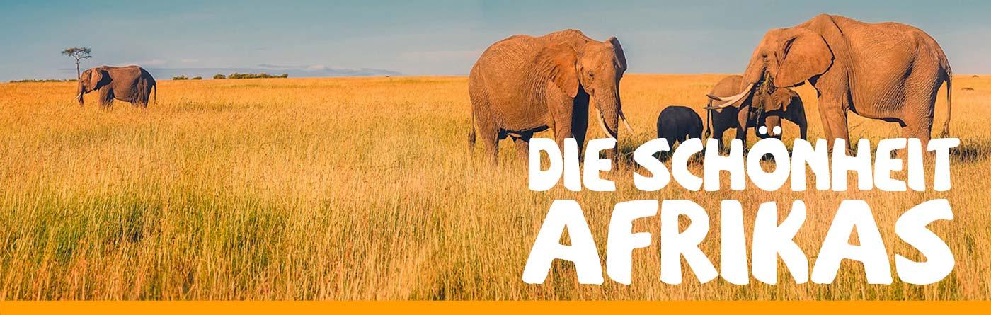 TEE-MAASS - Die Schönheit Afrikas