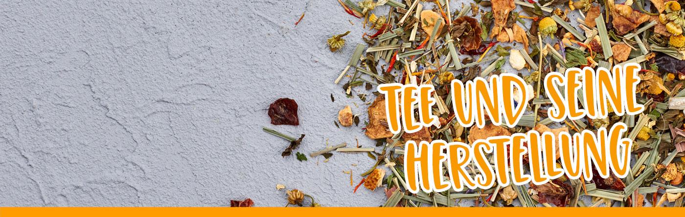 TEE-MAASS - Tee Wissen - Tee und seine Herstellung