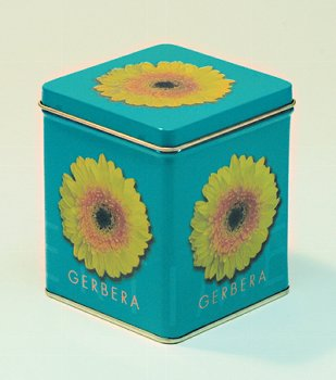 DO.GERBERA 100G/ECK.12