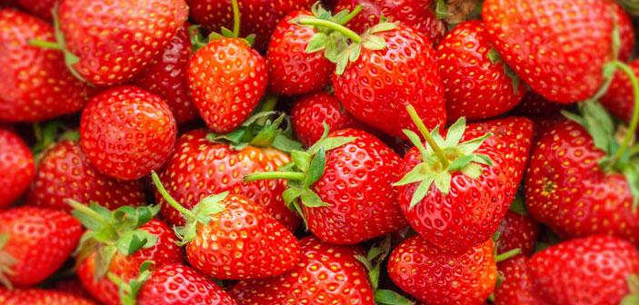 TEE-MAASS - Erdbeeren im Tee