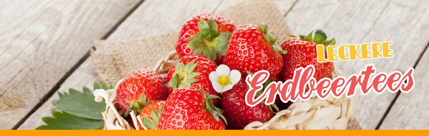 TEE-MAASS Erdbeertees
