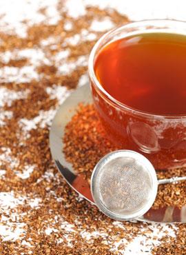 Fermentation des Roiboos-Tees